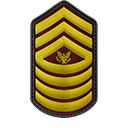 Command Sergeant Major_OR-9